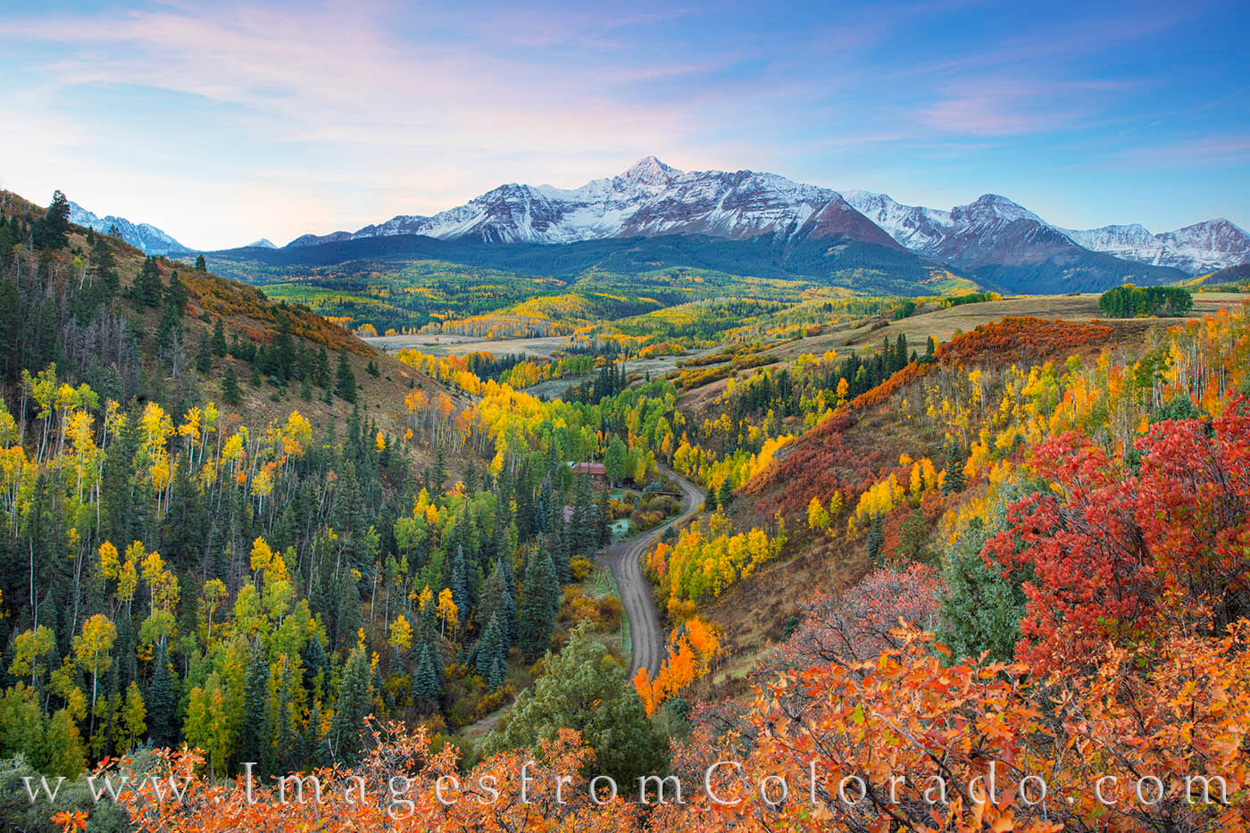 Before first light hit the peak of Mount Wilson, the high clouds were a soft, pastel pink. Below, the aspen trees were scattered...