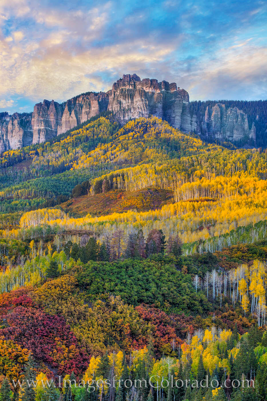 Between Ridgway and the top of Owl Creek Pass, the views can be incredible in Autumn. Here, the fall colors of aspen and scrub...