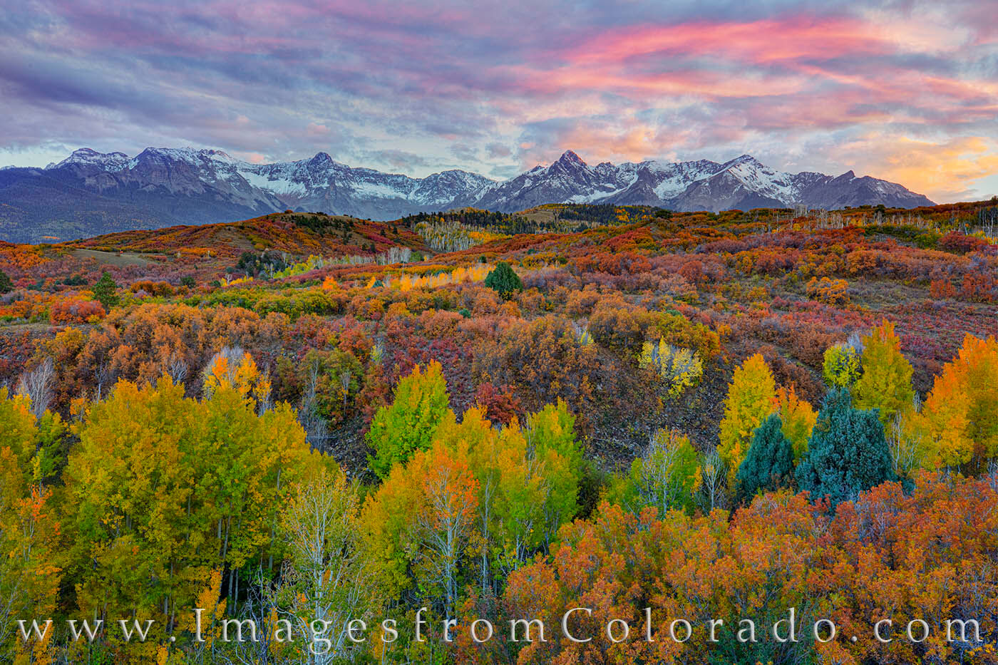 The mountain vista of the Dallas Divide shows off Autumn colors in early October. Green, gold, orange, and red of scrub brush...