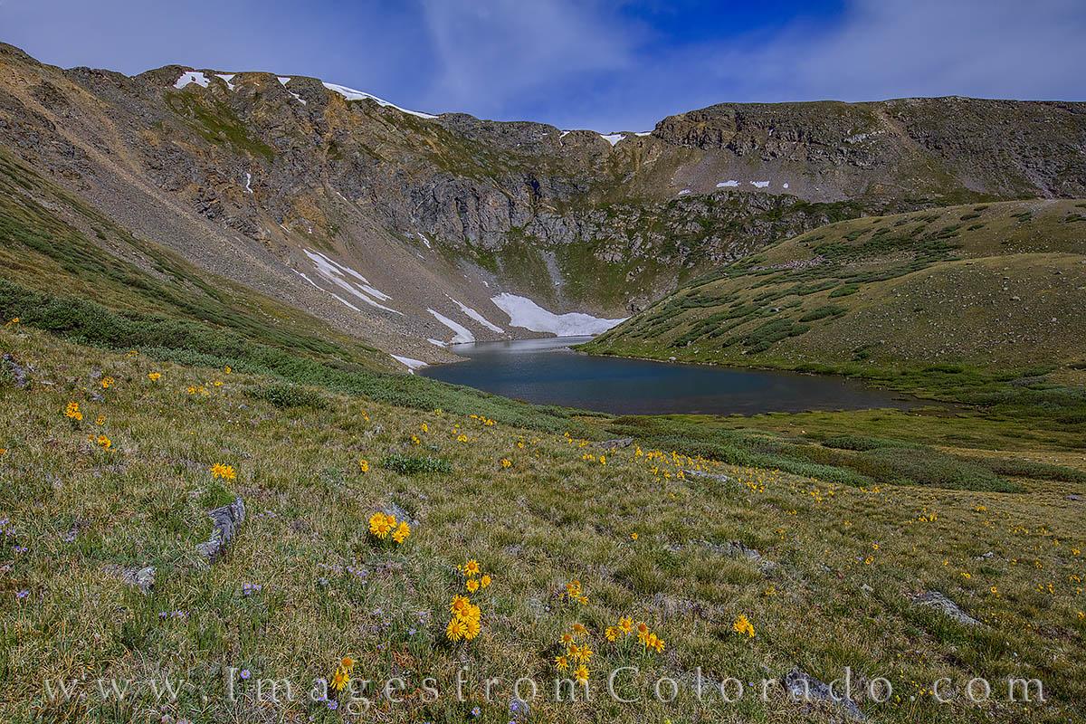 shelf lake, sunflowers, old man of the mountain, guanella pass, circque, hiking, alpine lakes, lake, wildflowers, morming, photo