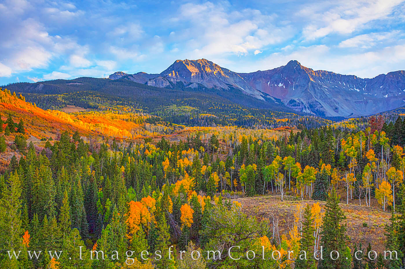 aspen, dallas divide, sneffels, fall, autumn, october, ridgway, CR 9, photo