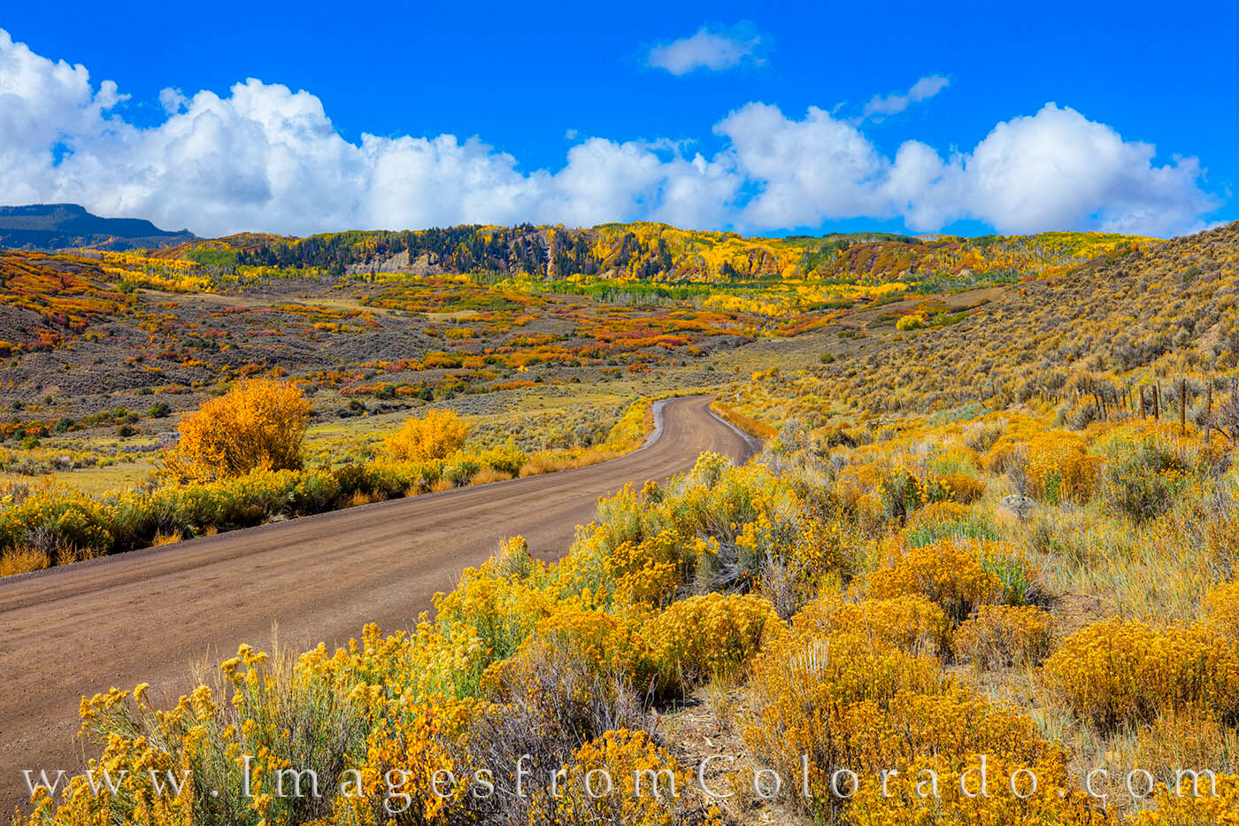 In Autumn, the dirt road into the Cimarron Valley and Owl Creek Pass is beautiul with colorful scrub and golden aspen in the...