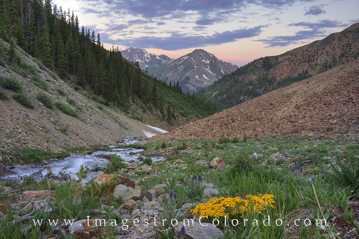 lake city, silver creek trailhead, 14ers, colorado wildflowers, sunrise, san juans, hiking, colorado hikes, colorado images, photo