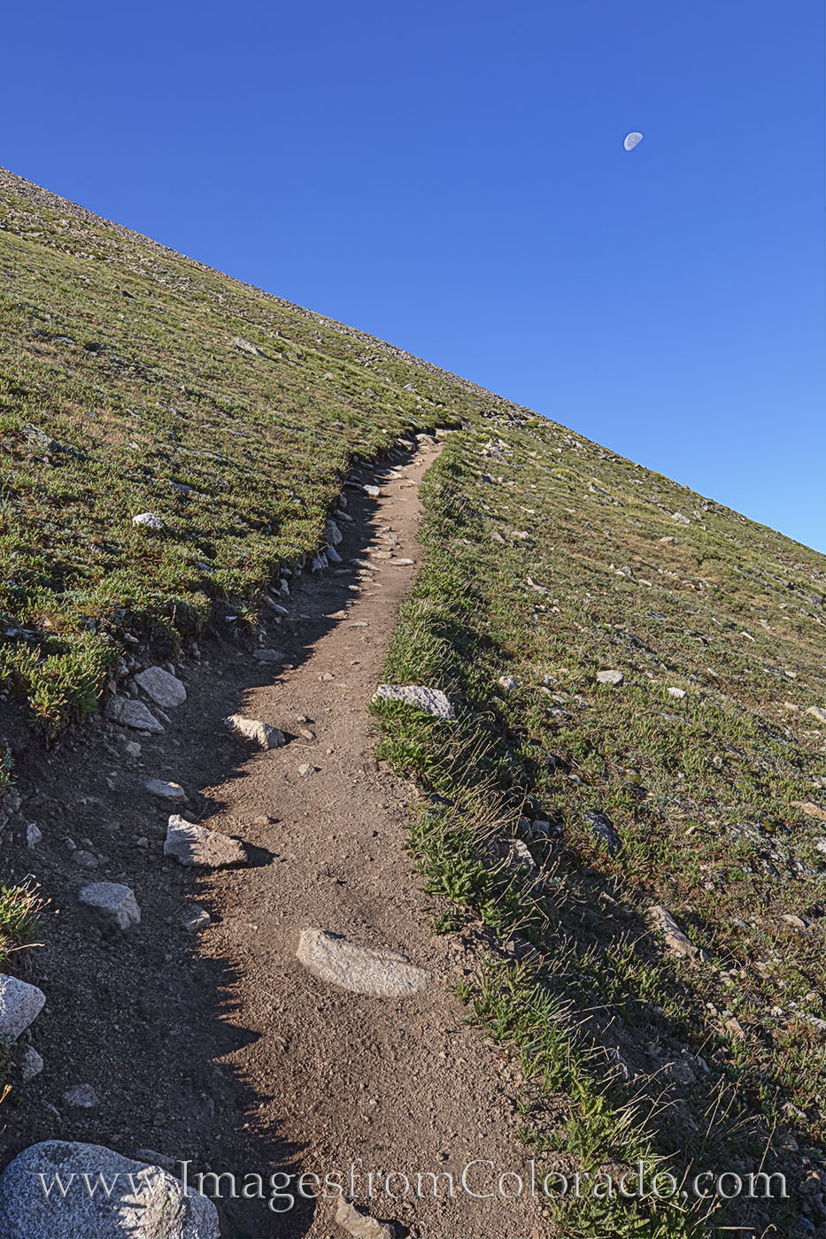 14ers, mount huron, moon, hiking, trails, collegiate peaks, suffering, photo