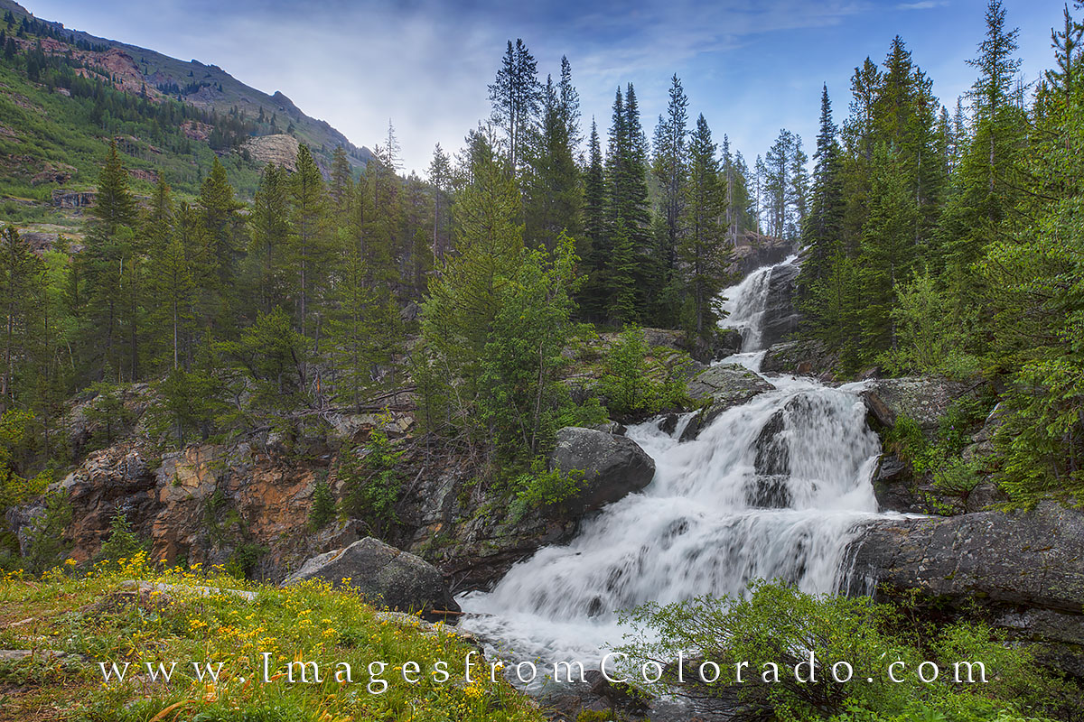 Cascade Falls, Indian Peaks, Indian Peaks Wilderness, Cascade Falls Trail, Colorado wildflowers, wildflower photos, waterfall, hiking colorado, colorado hikes, photo